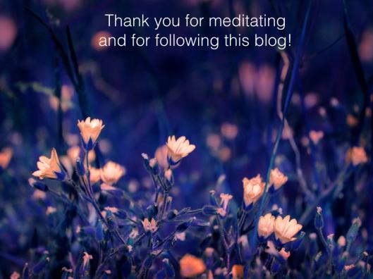 thank you blog.001