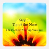tip of the nose