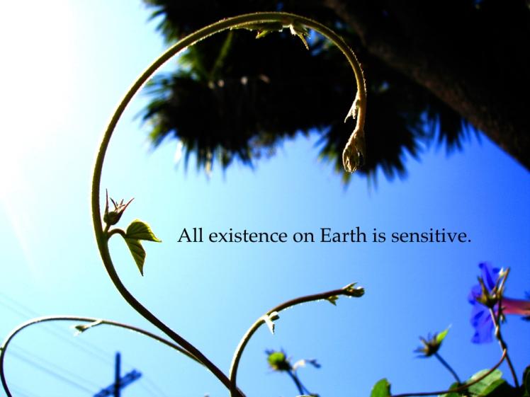 sensitive-001