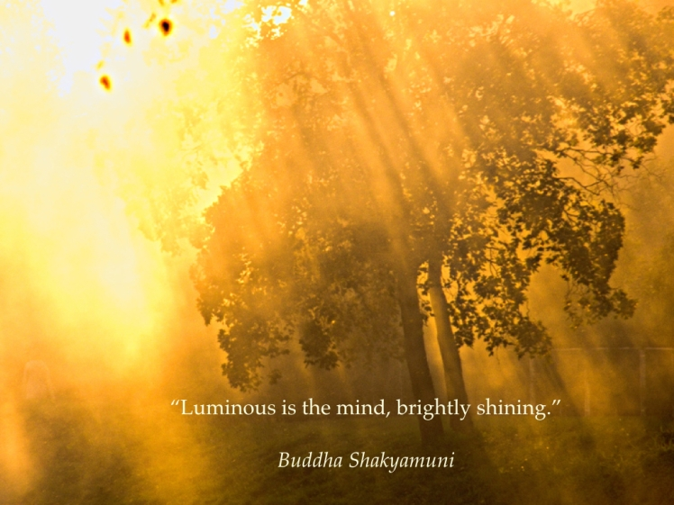 luminous-brightly-shining-001
