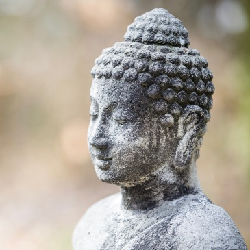 asana-buddha 2